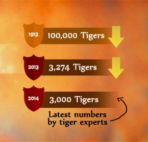 Image from tigerday.org