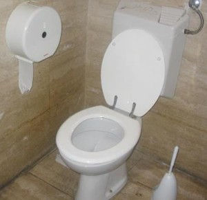 Western style toilet. Image from Wikipedia.