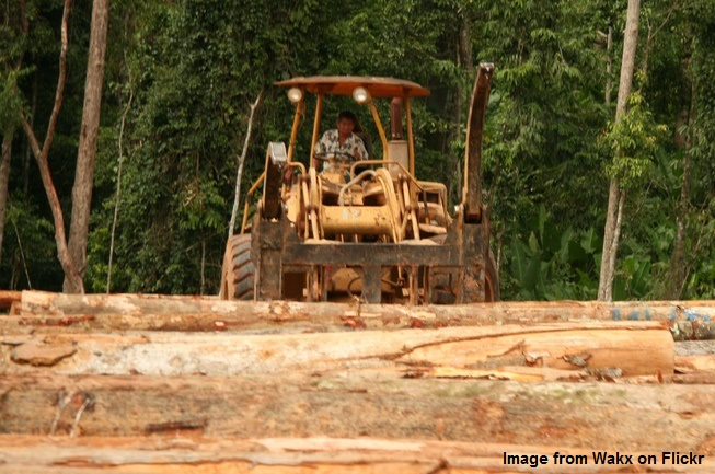 Malaysia deforestation fea img. Image rom Wakx on Flickr