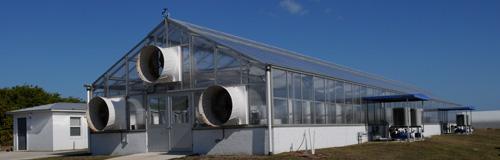 ora greenhouse