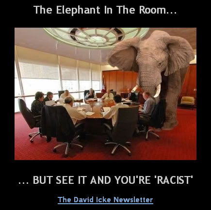 racist elephant in room