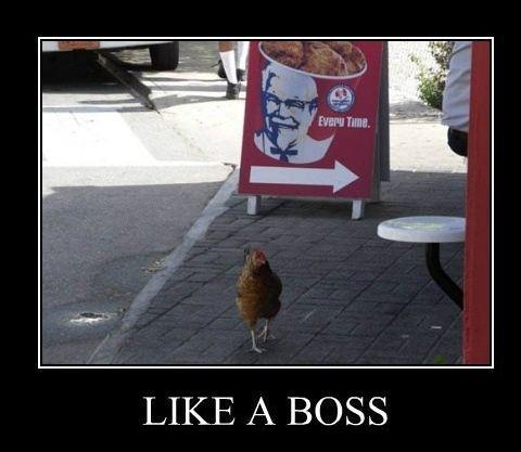 kfc like a boss