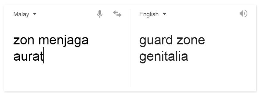 translate   Google Search