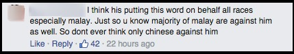 Malay commenter1