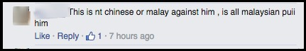 Malay commenter2