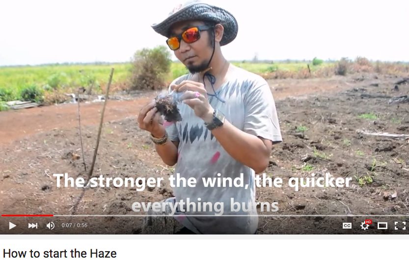 A really interesting, 56-second video about how haze is made. Click to watch!