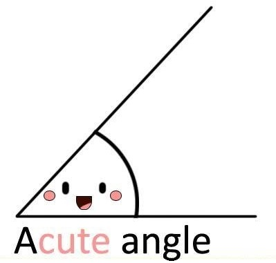 acute cute angle. Image from httpirrlicht.sourceforge.net.