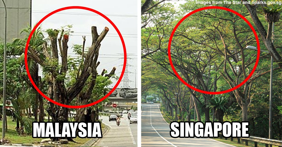 urban development process in malaysia Malaysian care  about malaysian care  3 core services  rural & urban community development   isn't malaysia a developing country, rich with natural resources why are there poor people  there will be no lasting change if the community doesn't truly desire or own the change process with this in mind, we see ourselves as partners.
