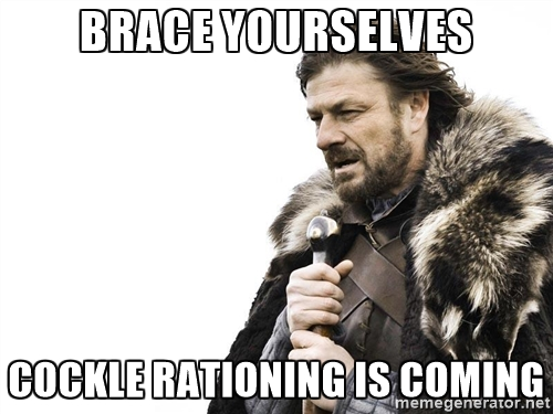 brace yourselves cockle