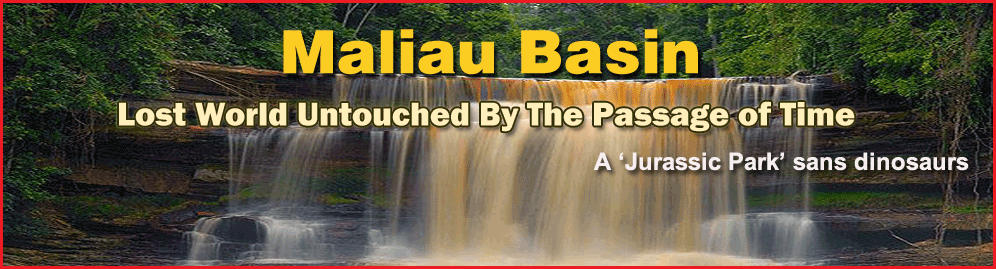 Maliau Basin official website screenshot