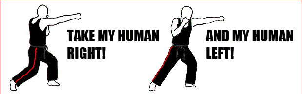 human right left punch