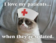 i love my patients when they sedated grumpy cat
