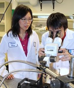assoc-prof-xingwei-wang-and-male-microscope-square-1400-opt_tcm18-234291