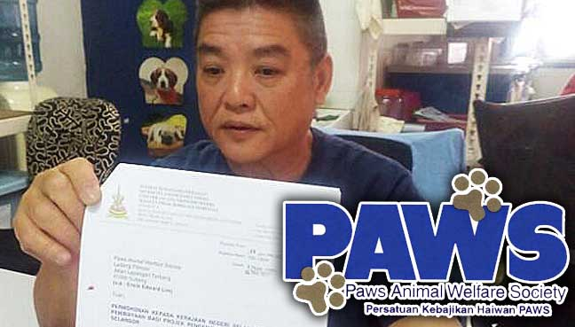 paws subsidy selangor stray pet spay neuter