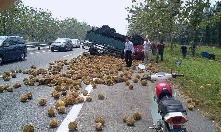 durian spill lorry
