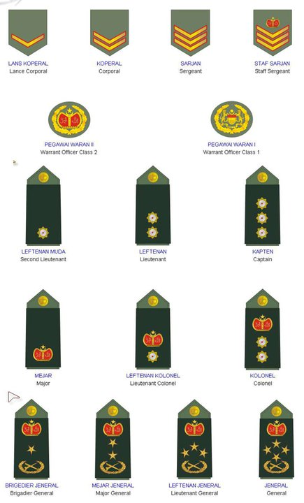The top two rows are the LLP. The rest are officers. Source