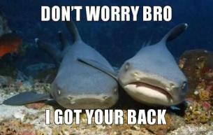They got each other's back, fam. Photo from Empathetic Shark