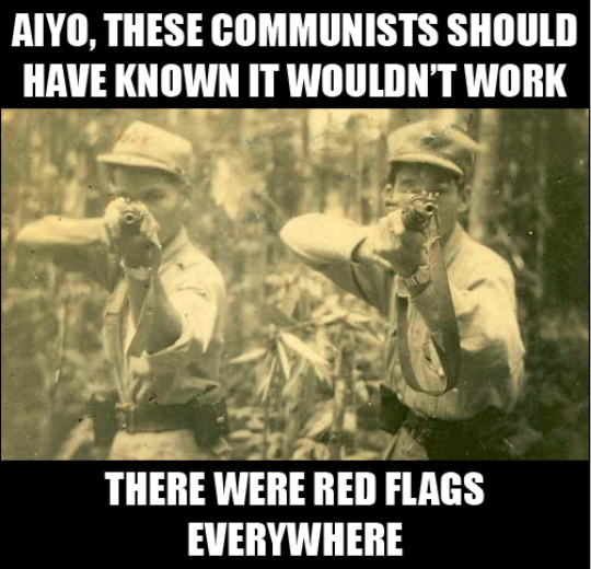 Communist Meme Red Flags Everywhere